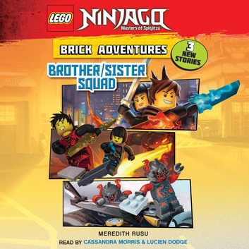 Lego Ninjago Brick Adventures 1 Brother Sister Squad