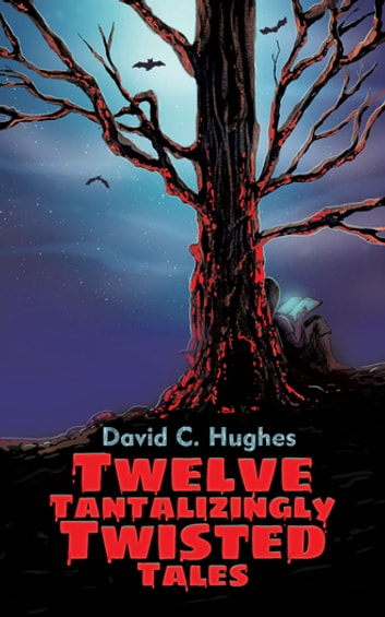 Twelve Tantalizingly Twisted Tales ebook by David C. Hughes