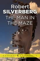 The Man In The Maze ebook by