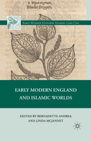 Early Modern England and Islamic Worlds ebook by L. McJannet,Bernadette Andrea