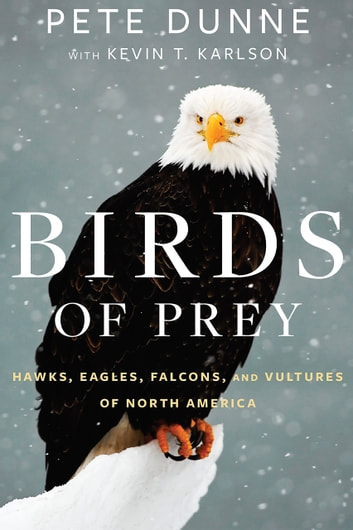 Birds of Prey - Hawks, Eagles, Falcons, and Vultures of North America ebook by Pete Dunne,Kevin T. Karlson