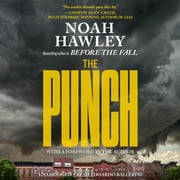 The Punch audiobook by Noah Hawley