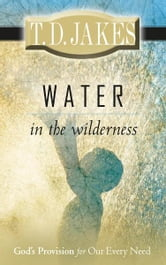 Water in the Wilderness - God's Provision for our Every Need ebook by T. D. Jakes