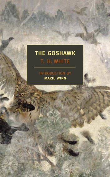 The Goshawk ebook by T.H. White