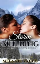 Storm Building - Blueprint For Love, #4 ebook by