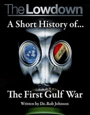 The Lowdown: A Short History of the First Gulf War ebook by Dr Rob Johnson