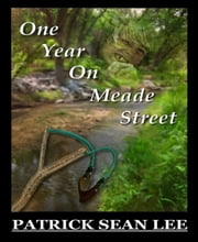 One Year On Meade Street ebook by Patrick Sean Lee