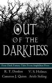 Out of the Darkness ebook by V. S. Holmes, R.T. Donlon, Cameron J Quinn,...