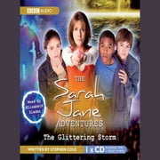 The Sarah Jane Adventures The Glittering Storm audiobook by Stephen Cole