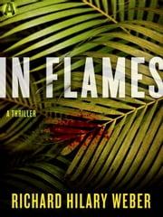 In Flames - A Thriller ebook by Richard Hilary Weber