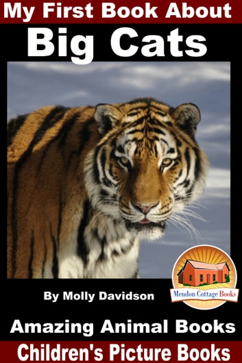 My first book about big cats amazing animal books childrens my first book about big cats amazing animal books childrens picture books ebook by fandeluxe Ebook collections