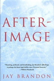 Afterimage ebook by Jay Brandon