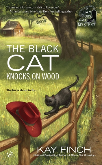 The Black Cat Knocks on Wood ebook by Kay Finch