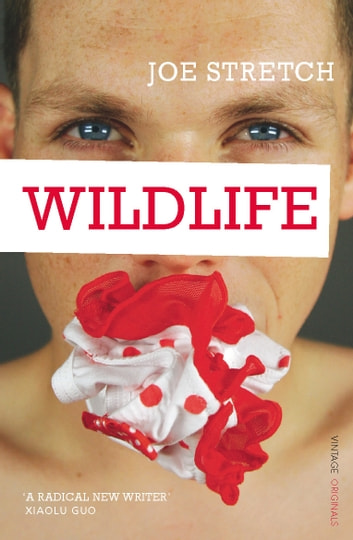 Wildlife eBook by Joe Stretch