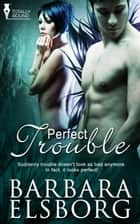 Perfect Trouble ebook by Barbara Elsborg