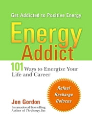 Energy Addict - 101 Physical, Mental, and Spiritual Ways to Energize Your Life ebook by Jon Gordon