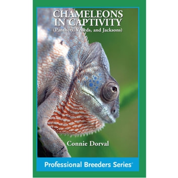 Chameleons in Captivity ebook by Connie Dorval