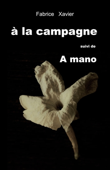 à la campagne - A mano ebook by fabrice xavier