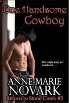 One Handsome Cowboy ebook by Anne Marie Novark