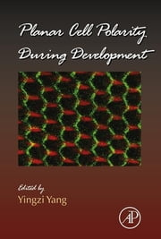 Planar Cell Polarity During Development ebook by Yingzi Yang