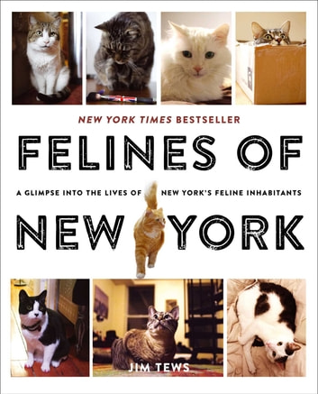 Felines of New York - A Glimpse Into the Lives of New York's Feline Inhabitants ebook by Jim Tews