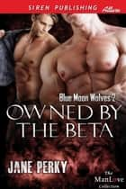 Owned by the Beta ebook by Jane Perky