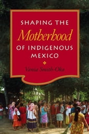 Shaping the Motherhood of Indigenous Mexico ebook by Smith-Oka, Vania