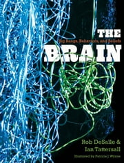 The Brain - Big Bangs, Behaviors, and Beliefs ebook by Rob DeSalle,Ian Tattersall,Ms. Patricia J. Wynne