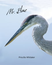 Mr. Blue ebook by Priscilla Whitaker