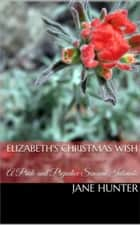 Elizabeth's Christmas Wish: A Pride and Prejudice Sensual Intimate ebook by Jane Hunter