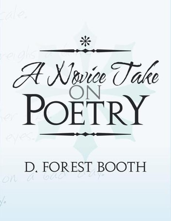 A Novice Take on Poetry ebook by D. Forest Booth