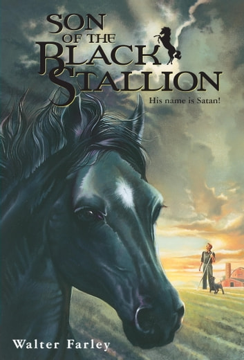 Son of the Black Stallion ebook by Walter Farley