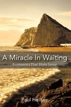 A Miracle in Waiting ebook by Shirleen Von Hoffmann