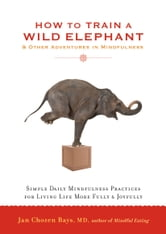 How to Train a Wild Elephant: And Other Adventures in Mindfulness - And Other Adventures in Mindfulness ebook by Jan Chozen Bays, MD