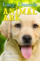 Animal Ark: Puppies in the Pantry 電子書 by Lucy Daniels