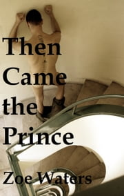 Then Came the Prince ebook by Zoe Waters