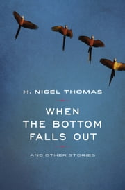 When the Bottom Falls Out ebook by H Nigel Thomas