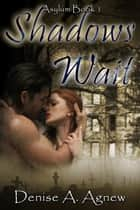 Shadows Wait (Asylum Trilogy Book 1) - Asylum Trilogy ebook by Denise A. Agnew