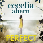 Perfect audiobook by Cecelia Ahern