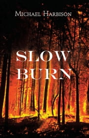 Slow Burn ebook by Michael Harbison