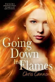 Going Down in Flames ebook by Chris Cannon