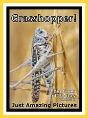 Just Grasshopper Photos! Big Book of Photographs & Pictures of Grasshoppers, Vol. 1 ebook by Big Book of Photos