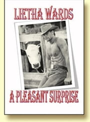 A Pleasant Surprise ebook by Lietha Wards