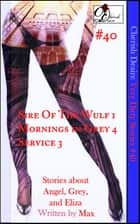 Very Dirty Stories #40 ebook by Max Cherish