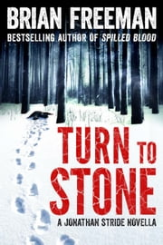 Turn to Stone ebook by Brian Freeman