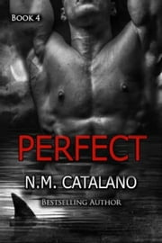 Perfect - Stranger ebook by N.M. Catalano