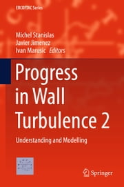 Progress in Wall Turbulence 2 - Understanding and Modelling ebook by