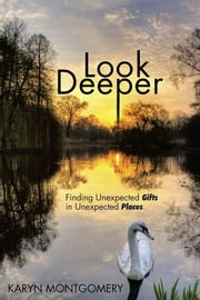 Look Deeper - Finding Unexpected Gifts in Unexpected Places ebook by Karyn Montgomery