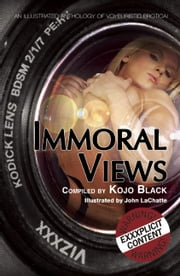 Immoral Views - An illustrated anthology of voyeuristic erotica ebook by Kay Jaybee,Lexie Bay,K. D. Grace,Rebecca Bond,Lucy Felthouse