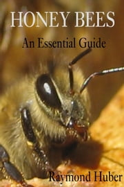 Honey Bees: An Essential Guide ebook by Raymond Huber